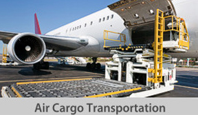 Air cargo transport button