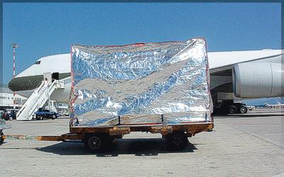 copertura isotermica cargo 1